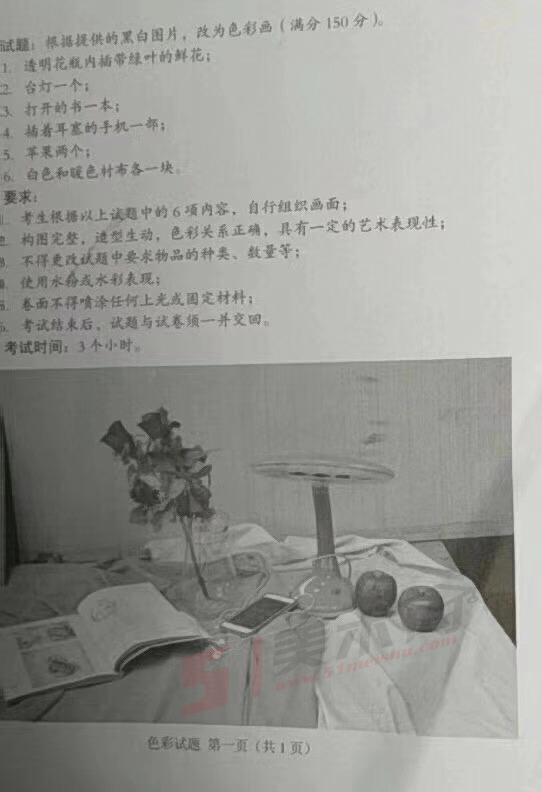 2019年安徽美术联考色彩考题