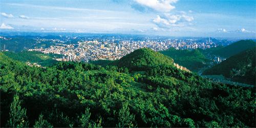 贵州:2019年艺术类志愿批次设置及投档规则