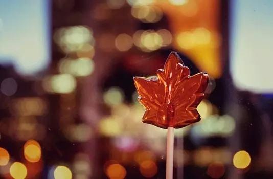 留学与不留学有什么不一样?听听留学加拿大的过来人怎么说