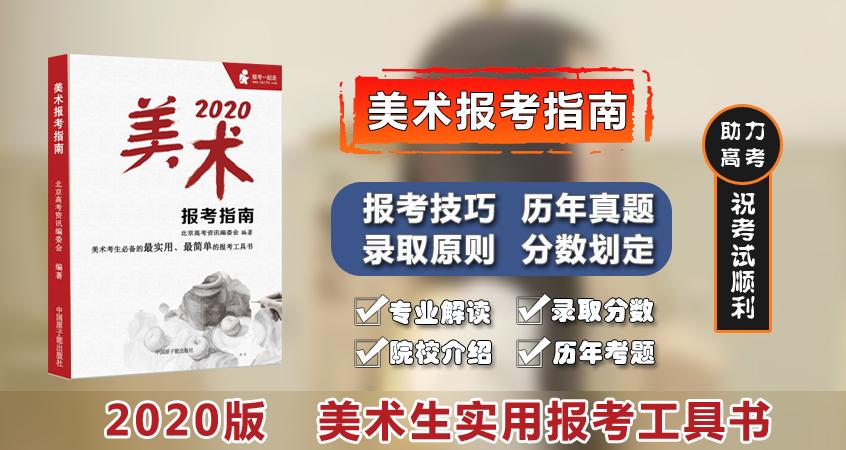 预售2020版《美术报考指南》院校报考分析指南,统考校考报志愿院校报考工具书