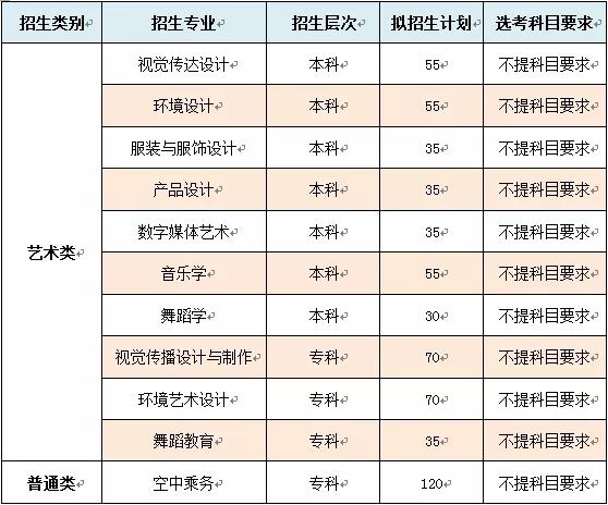 山东女子学院2020年山东省艺术类招生简章