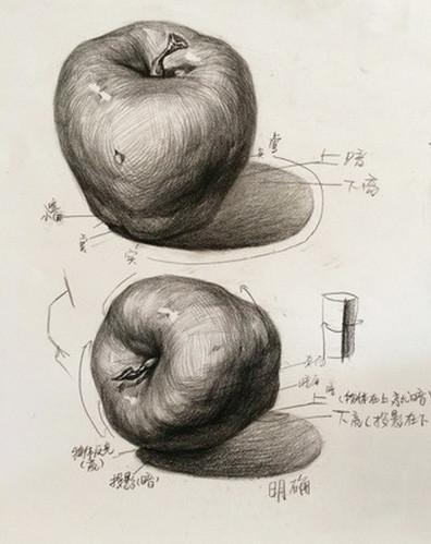 素描静物单个物体怎么画